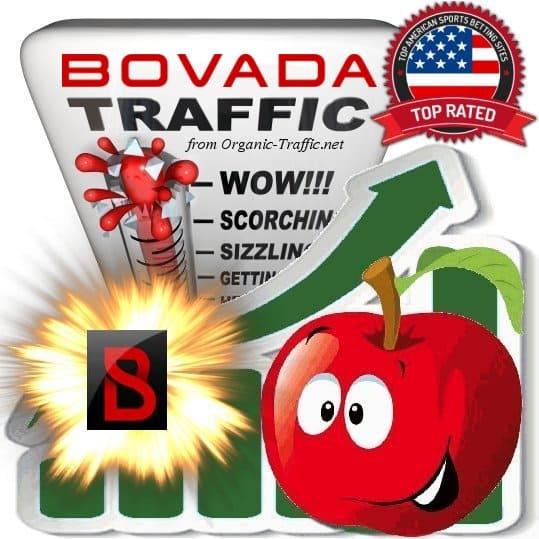 Buy Bovada.lv Web Traffic Service