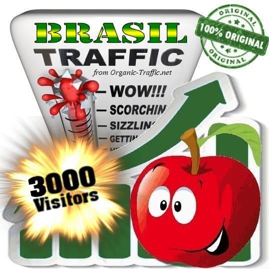 Buy 3000 Brasil Visitors