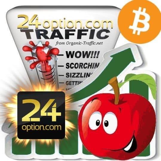 Buy 24option.com Visitor Traffic