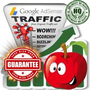 buy google adsense safe traffic