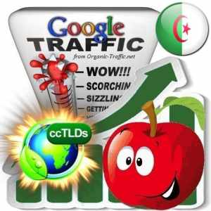 buy google algeria organic traffic visitors