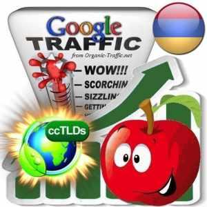 buy google armenia organic traffic visitors