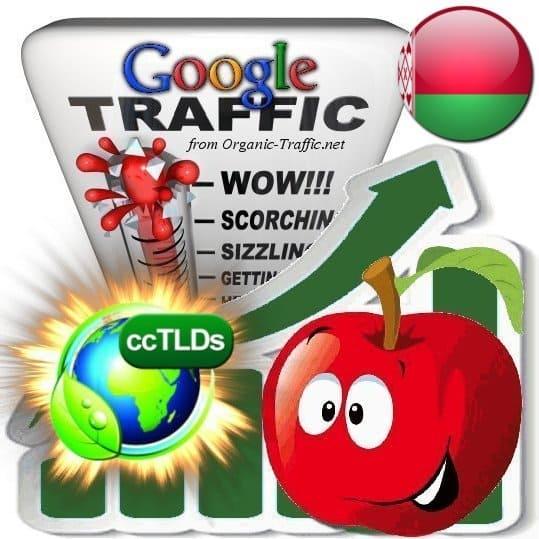 buy google belarus organic traffic visitors