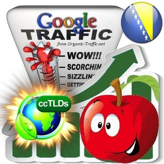 buy google bosnia herzegovina organic traffic visitors