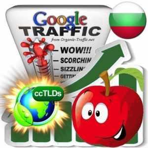 buy google bulgaria organic traffic visitors