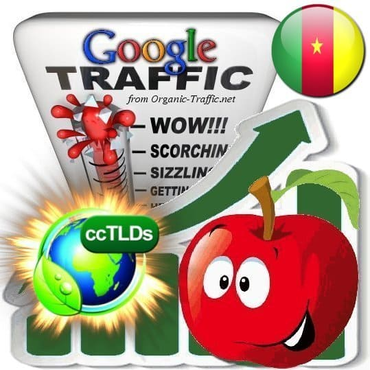 buy google cameroon organic traffic visitors