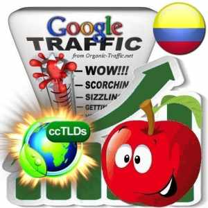 buy google colombia organic traffic visitors