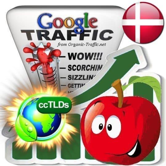 buy google denmark organic traffic visitors