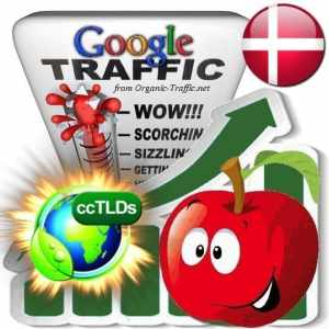 buy google denmark organic traffic visitors