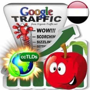 buy google egypt organic traffic visitors