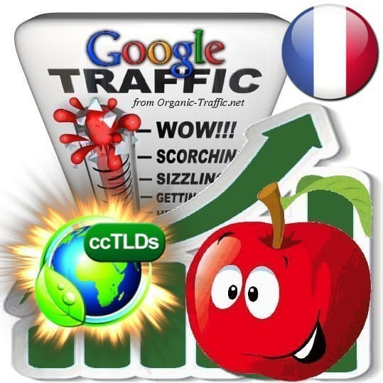 buy google france organic traffic visitors