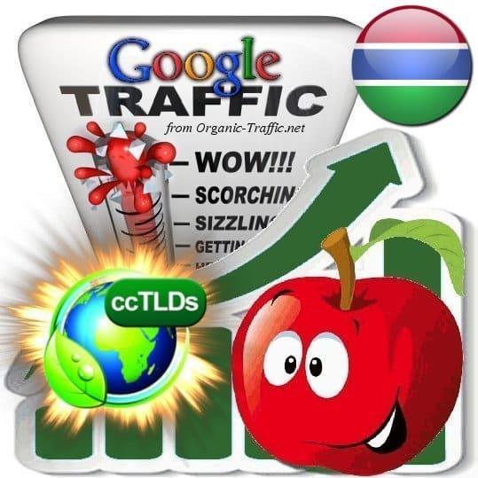buy google gambia organic traffic visitors