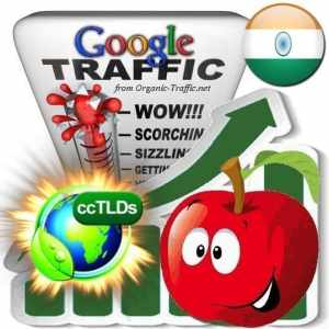 buy google india organic traffic visitors