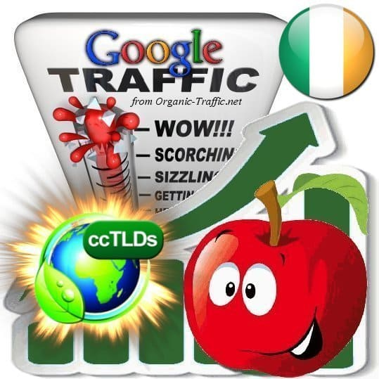 buy google ireland organic traffic visitors
