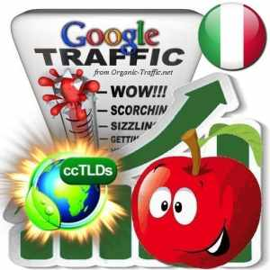 buy google italy organic traffic visitors