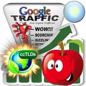 buy google kazakhstan organic traffic visitors