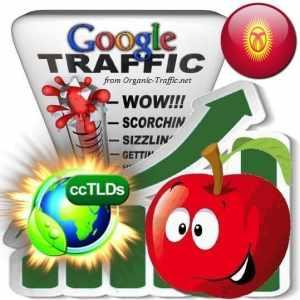 buy google kyrgyzstan organic traffic visitors