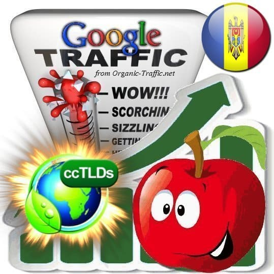 buy google moldova organic traffic visitors