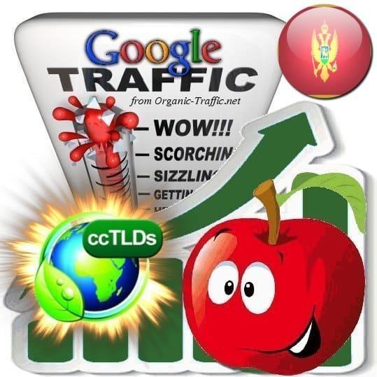 buy google montenegro organic traffic visitors