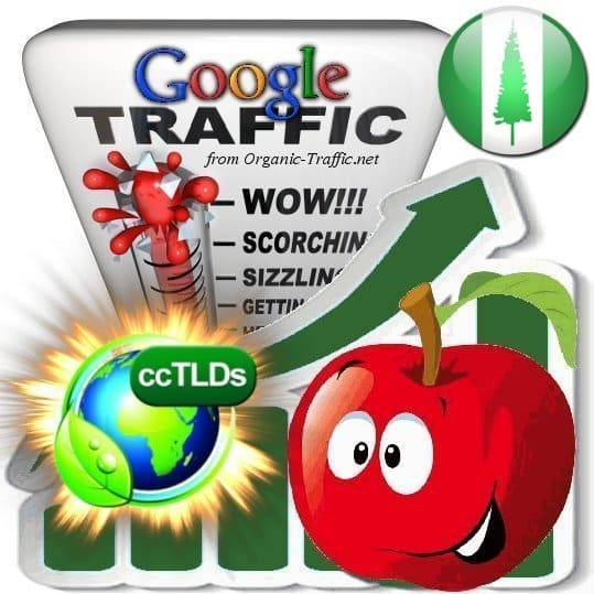buy google norfolk island organic traffic visitors