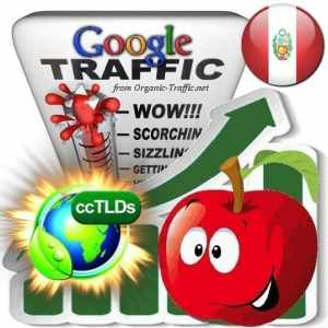 buy google peru organic traffic visitors
