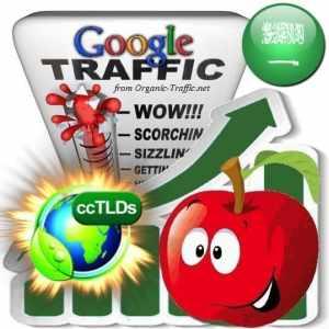 buy google saudi arabia organic traffic visitors