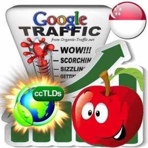 buy google singapore organic traffic visitors