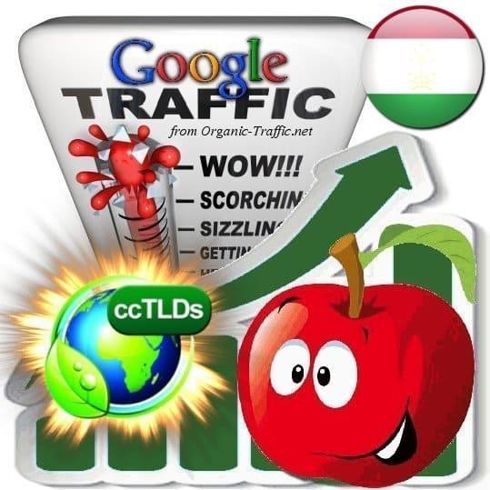 buy google tajikistan organic traffic visitors