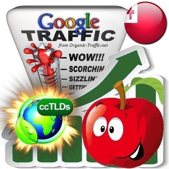 buy google tonga organic traffic visitors