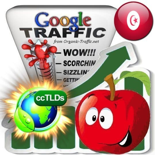 buy google tunisia organic traffic visitors