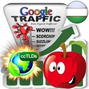 buy google uzbekistan organic traffic visitors