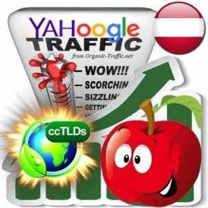 Buy Google & Yahoo Austria Web Traffic