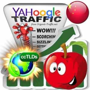 Buy Google & Yahoo China Webtraffic