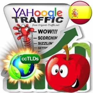 Buy Google & Yahoo Spain Webtraffic