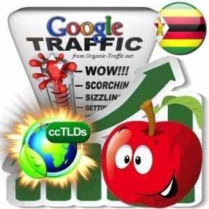 buy google zimbabwe organic traffic visitors