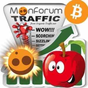 Buy MoonForum.net Traffic Visitors