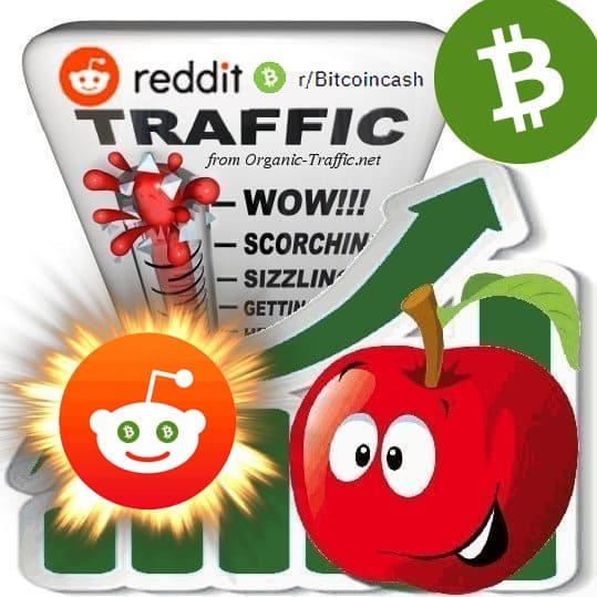 Buy Reddit r/Bitcoincash Traffic