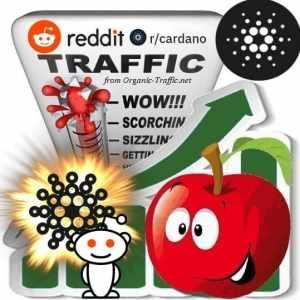 Buy Reddit r/Cardano Visitors