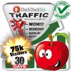 duckduckgo search traffic visitors 30days 75k