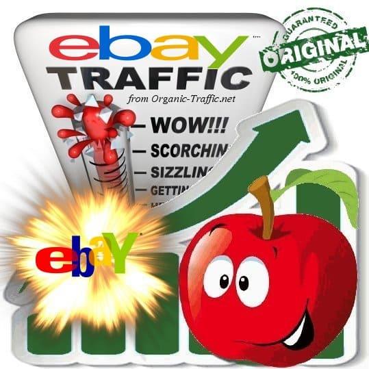 Buy eBay.com Referral Web Traffic