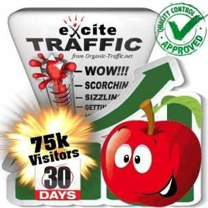 buy 75.000 exite search traffic visitors in 30 days