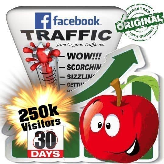 250k facebook social traffic visitors in 30 days