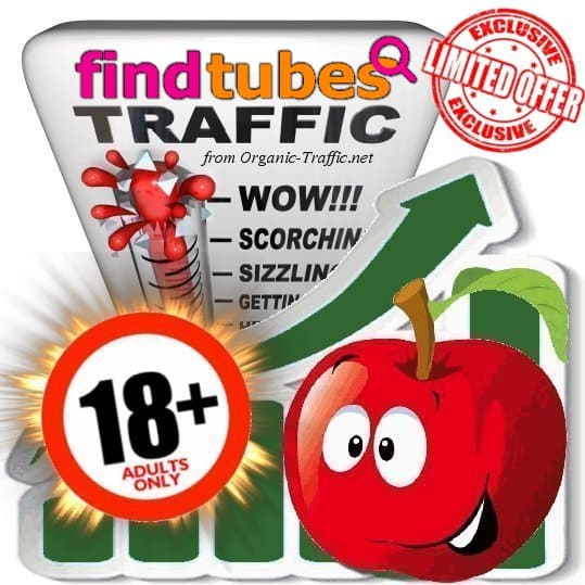 Buy Findtubes.com Adult Traffic