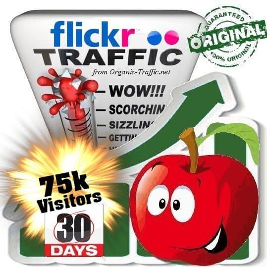 buy 75k flickr social traffic visitors in 30 days