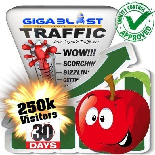 buy 250.000 gigablast search traffic visitors in 30days