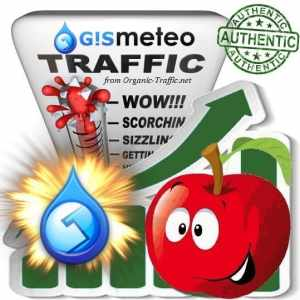 Buy Web Traffic - Gismeteo.ru