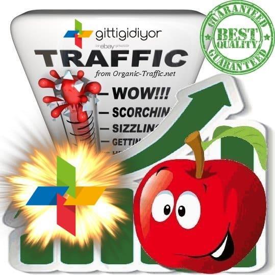 Buy Website Traffic Gittididiyor.com