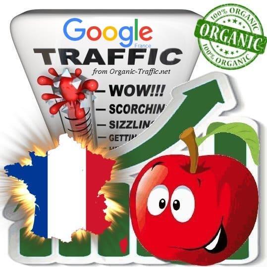 Google France Web Traffic Service