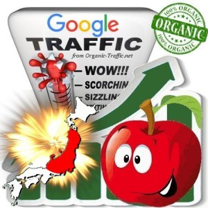 Japanese Google Search Traffic