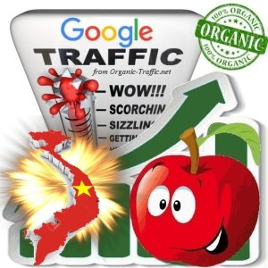Buy Vietnamese Google Search Traffic